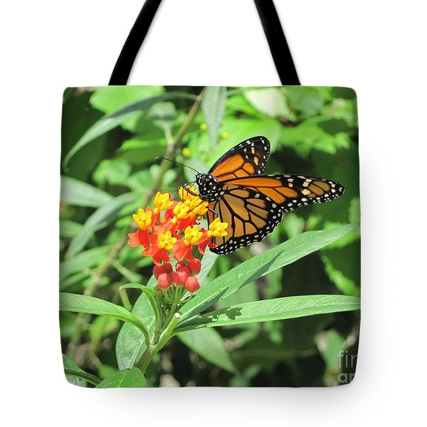 Monarch At Rest Tote Bag