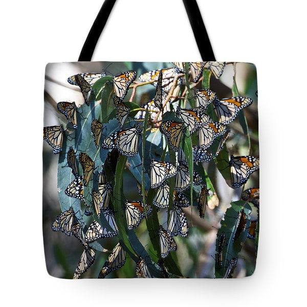 Monarch Butterflies Natural Bridges Tote Bag