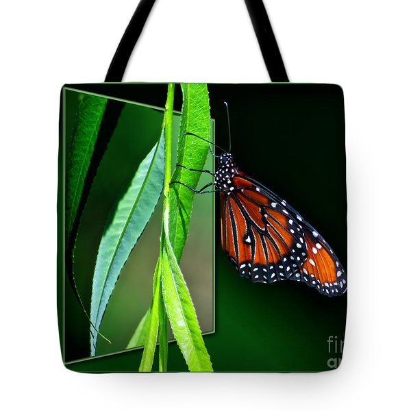Monarch Butterfly 04 Tote Bag by Thomas Woolworth