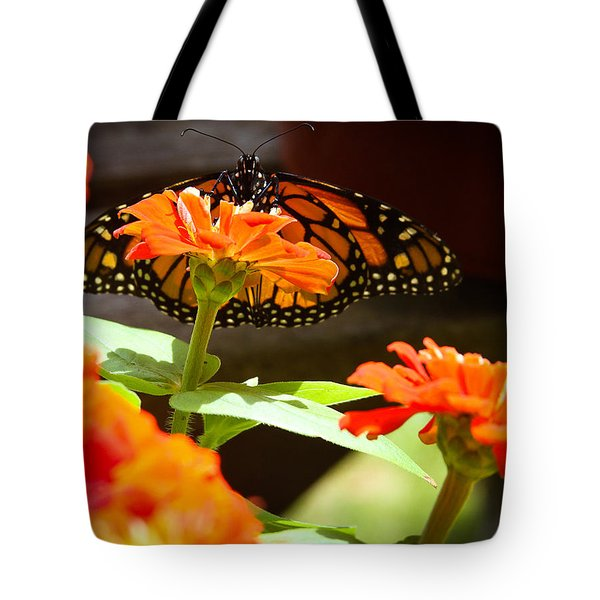 Tote Bag featuring the photograph Monarch Butterfly II by Patrice Zinck