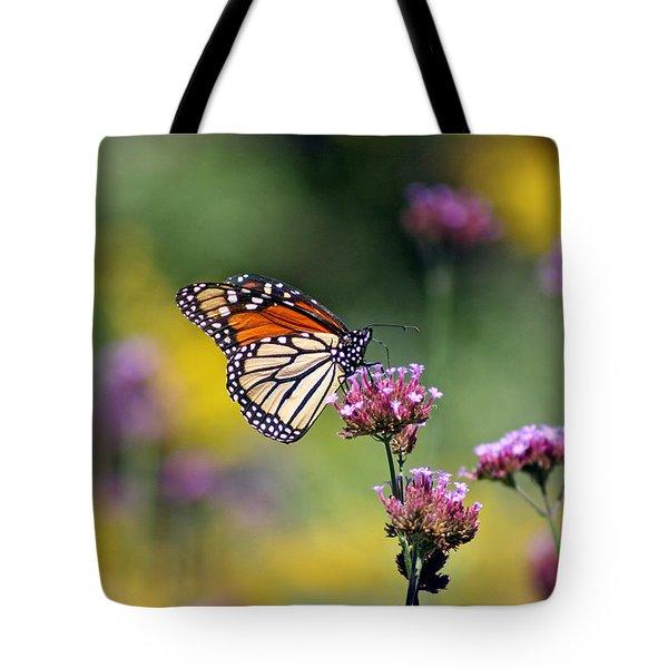 Monarch Butterfly In Field On Verbena Tote Bag by Karen Adams