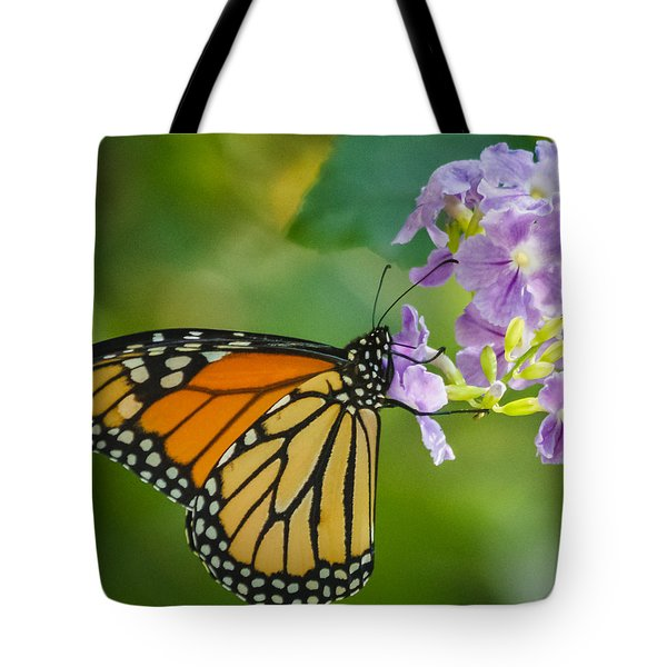 Monarch Butterfly Tote Bag by Jane Luxton