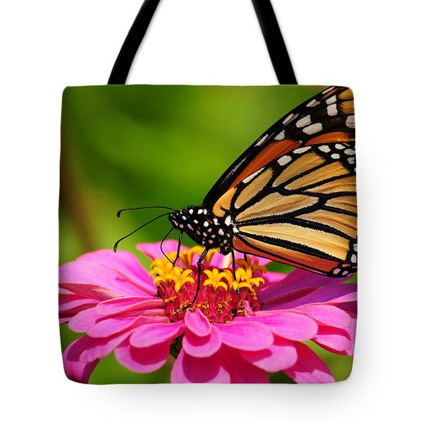 Monarch Butterfly On Zinnia Tote Bag