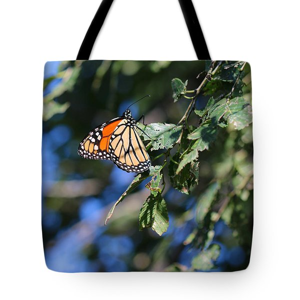Tote Bag featuring the photograph Monarch Butterfly by Rebecca Davis