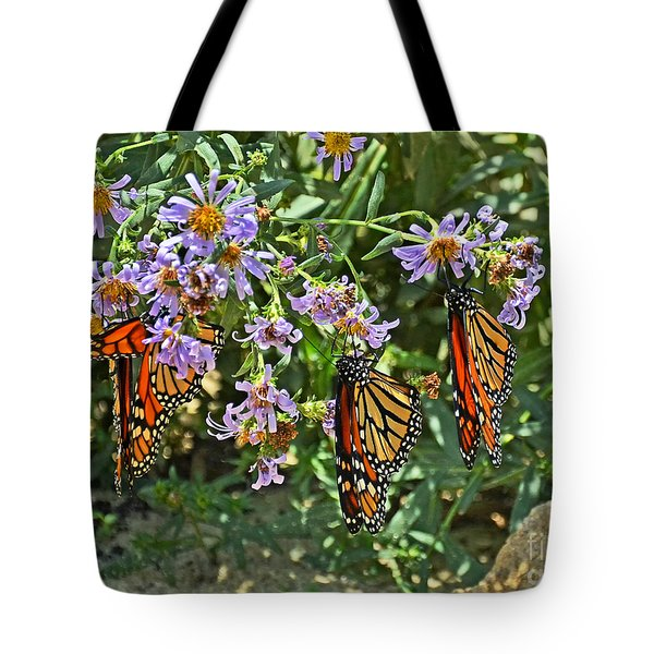 Monarch Butterfly Trio Tote Bag
