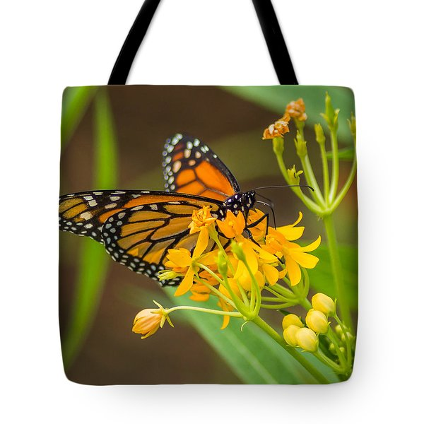 Tote Bag featuring the photograph Monarch by Jane Luxton