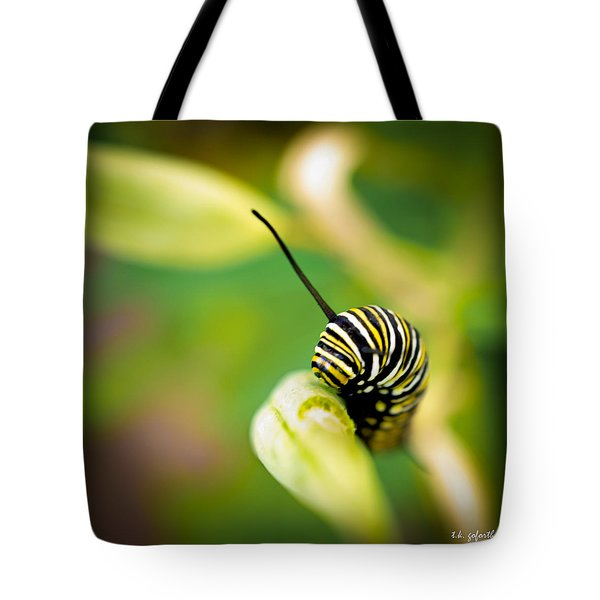 Monarch Offspring Squared Tote Bag by TK Goforth