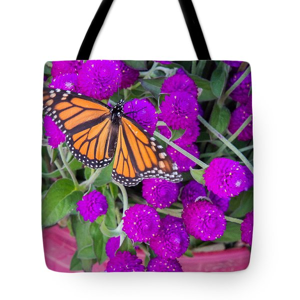 Monarch On Bachelor Buttons Tote Bag