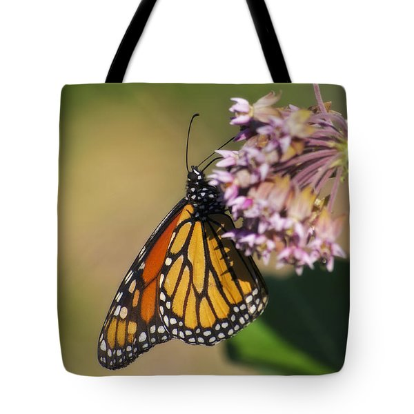 Monarch On Milkweed Tote Bag by Shelly Gunderson