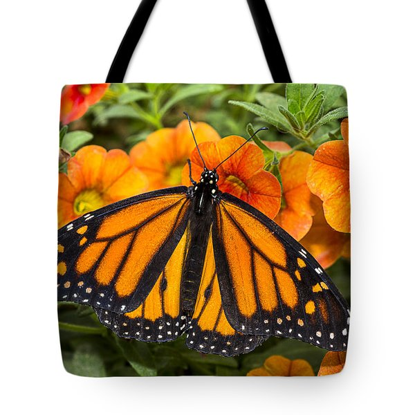 Monarch Resting Tote Bag by Garry Gay