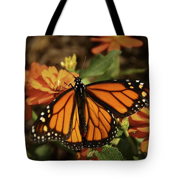Monarch Spotlight. Tote Bag