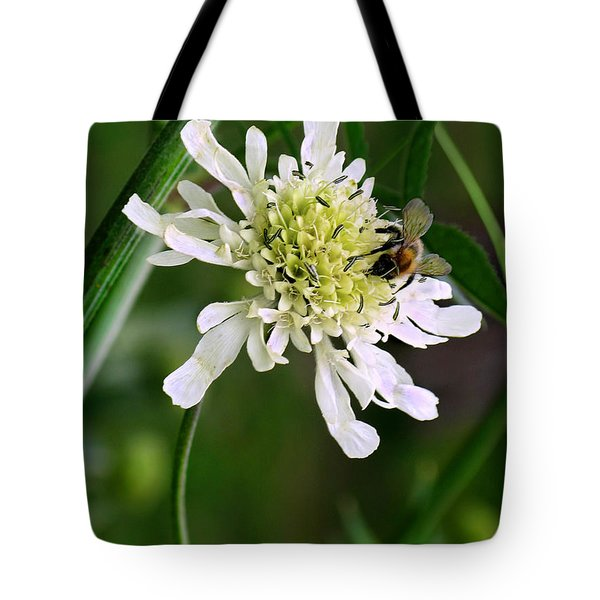 Tote Bag featuring the photograph Monet's Garden Bee. Giverny by Jennie Breeze