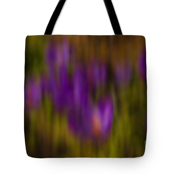Tote Bag featuring the photograph Monet's Garden by Sandi Mikuse