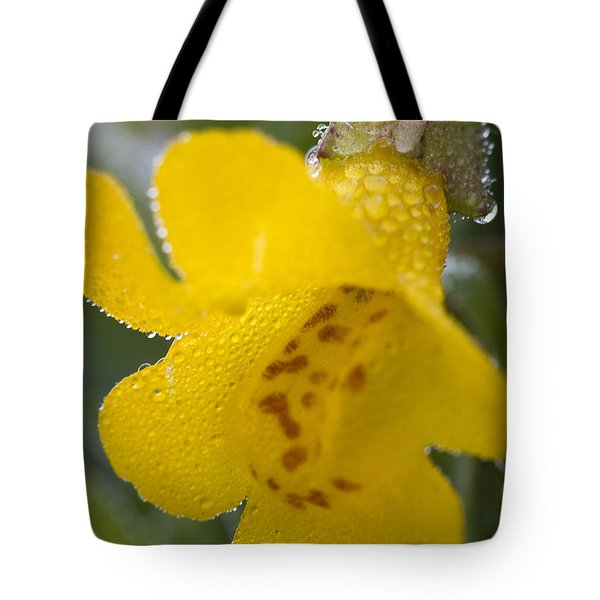 Tote Bag featuring the photograph Monkey In Yellow by Sonya Lang