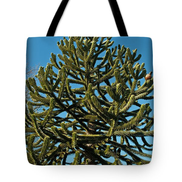 Monkey Puzzle Tree E Tote Bag by Tikvah's Hope