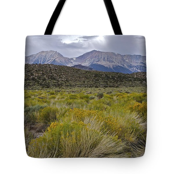 Mono Basin Lee Vining 1 Tote Bag