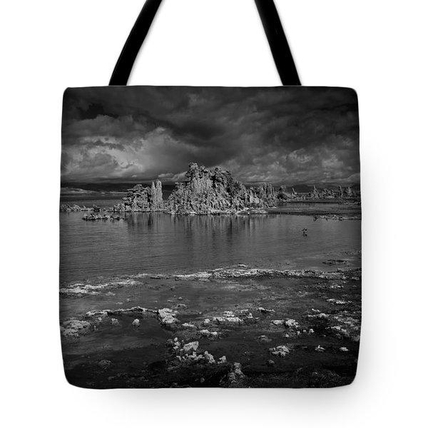 Mono Lake Tufa Tote Bag