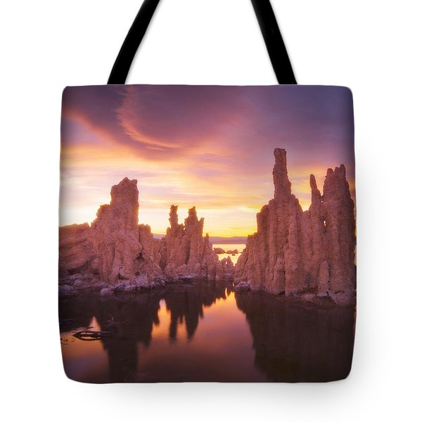 Mono Magic Tote Bag by Peter Coskun