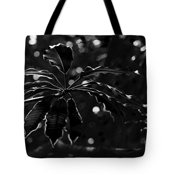 Monochrome Leaf  Tote Bag