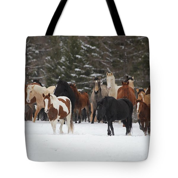 Montana Herd Tote Bag by Diane Bohna