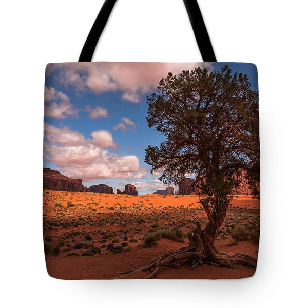 Monument Valley Morning Tote Bag by Tim Bryan