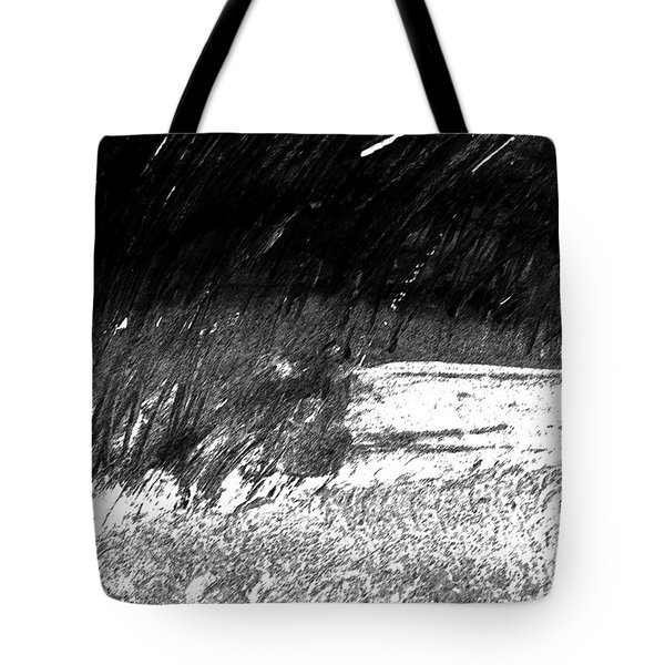 Moods Of Nature 3 Tote Bag by Lenore Senior
