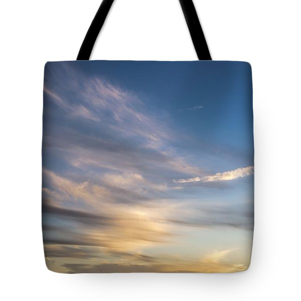 Moon Over Doheny Tote Bag by Peggy Hughes