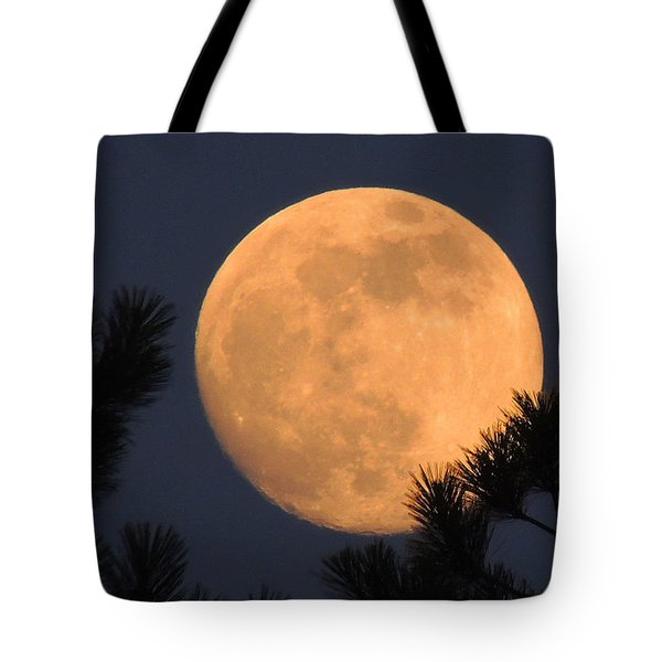 Tote Bag featuring the photograph Moon Pines by Charlotte Schafer