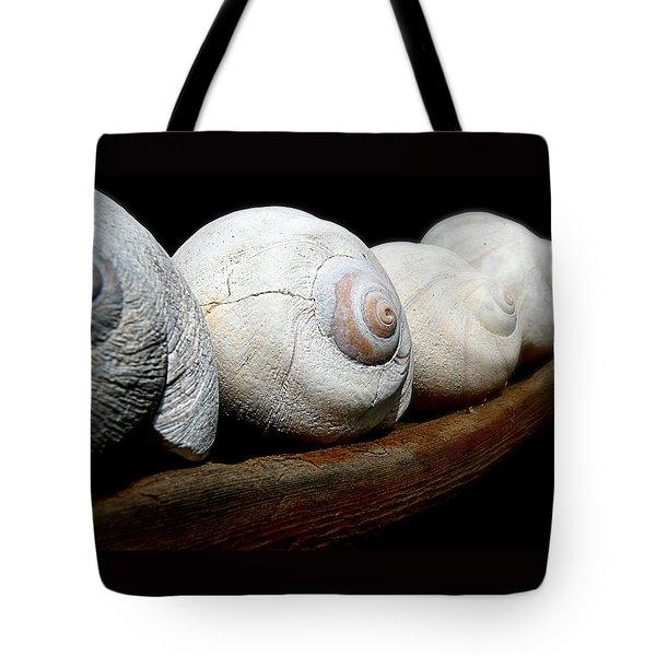 Moon Shells Tote Bag by Micki Findlay