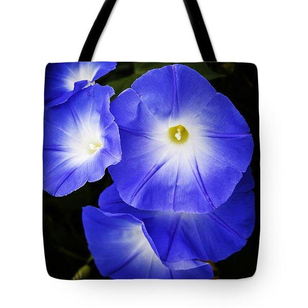 Moonglow On Blue Tote Bag