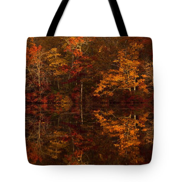 Moonlight Autumn Tote Bag by Jonathan Steele