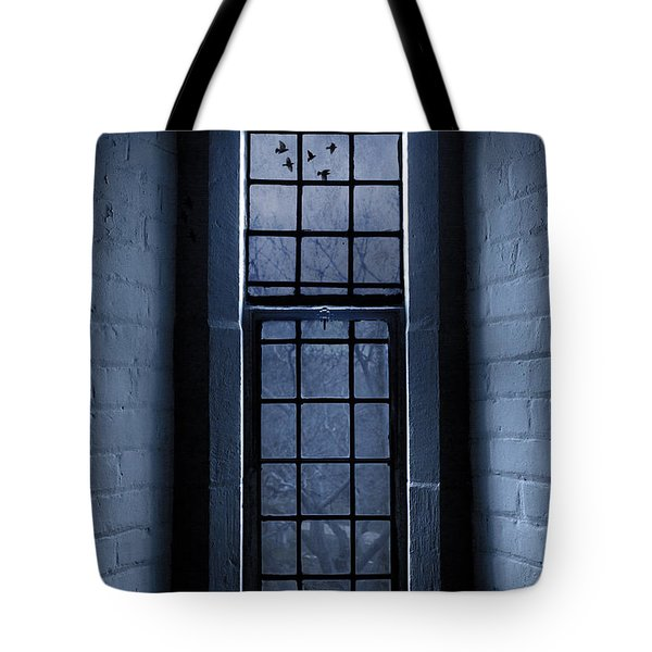 Moonlight Tote Bag by Dale Kincaid