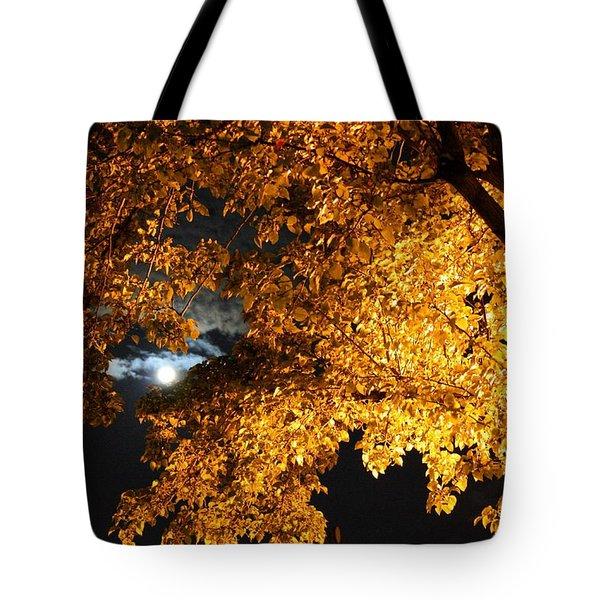 Moonlight Tote Bag by Dan Stone