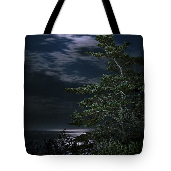 Moonlit Treescape Tote Bag