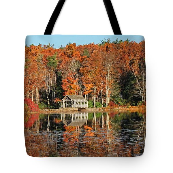 Moore State Park Autumn I Tote Bag