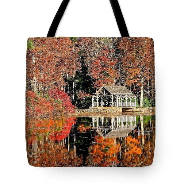 Moore State Park Autumn II Tote Bag