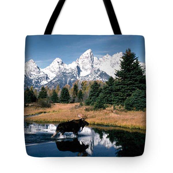 Moose & Beaver Pond Grand Teton Tote Bag