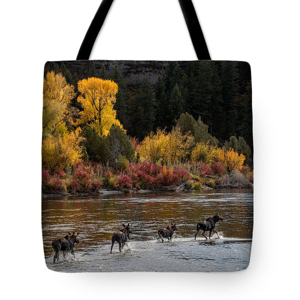Moose Crossing Tote Bag