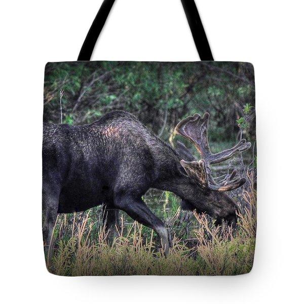 Moose In The Meadow Tote Bag