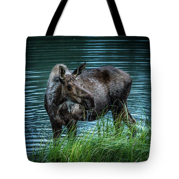 Moose In The Water Tote Bag