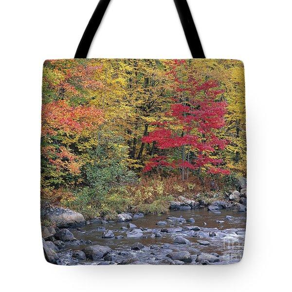 Moose River Autumn Tote Bag by Alan L Graham