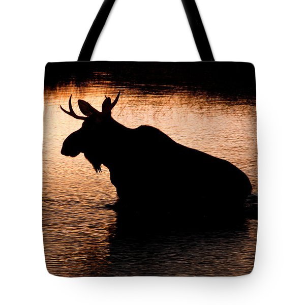 Moose Silhouette 3569   Tote Bag by Brent L Ander
