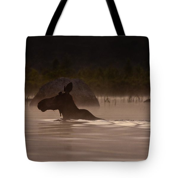 Moose Swim Tote Bag