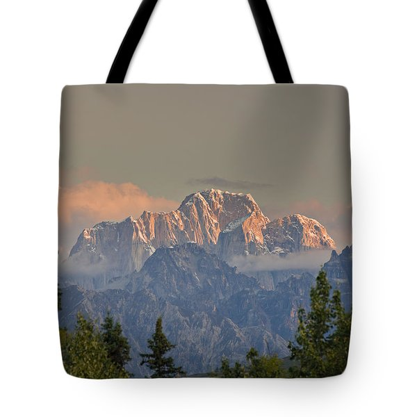 Moose's Tooth Tote Bag by Kevin G Smith