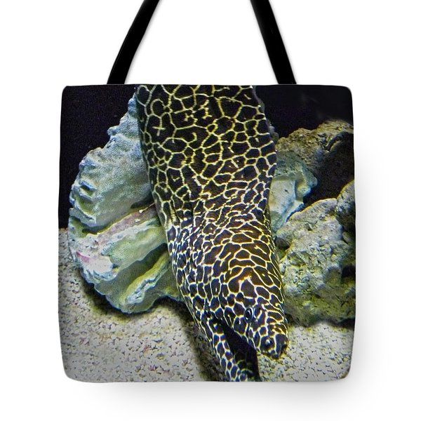 Moray Eel Tote Bag by Sandi OReilly
