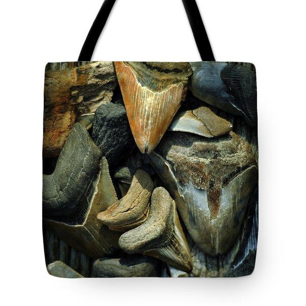 More Megalodon Teeth Tote Bag