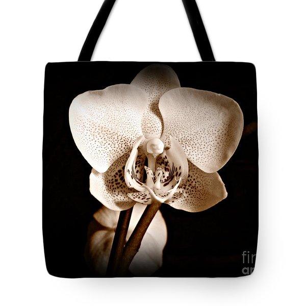 Morning Beauty Sepia Tote Bag