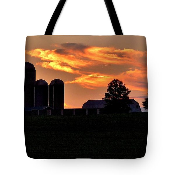 Morning Blush Tote Bag by Robert Geary