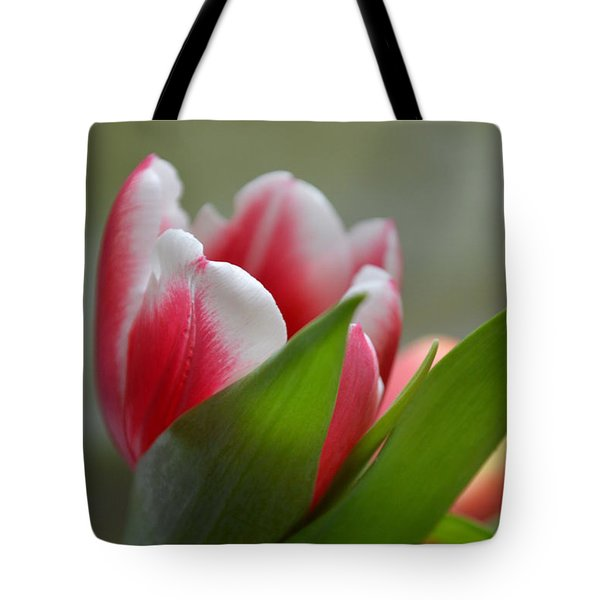 Morning Brilliance Tote Bag