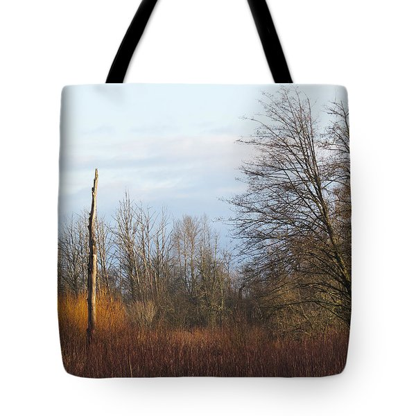 Tote Bag featuring the photograph Morning Colors  by I'ina Van Lawick